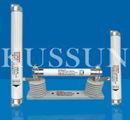 高压熔断器 XRNT1-12, XRNT-10高压熔断器