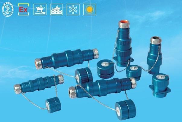 防爆连接器BLJ85- 防爆电缆连接器 防爆防腐插接头 防爆箱体连接