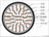台州電纜型號ZR-DJYJPV22計算機電纜