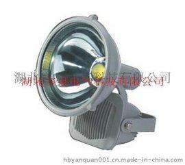 NTC6901-LED防震投光灯-60W