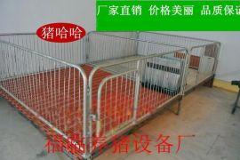 畜牧/养殖业机械河北张家口小猪保育床母猪用产床价格养猪设备厂报价