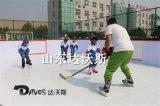 廠家直銷仿真冰溜冰板旱冰場地板質量保證
