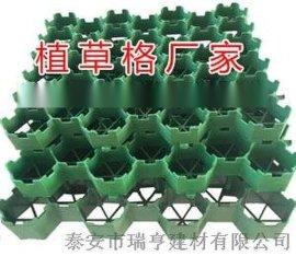 漯河塑料植草格厂家  价格
