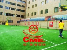 篮球场草坪 篮球场人造草坪 北京篮球场人造草坪