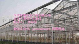 石狮 龙海 漳平 宁德 福安温室大棚骨架安装 代加工温室大棚骨架河南歌珊温室