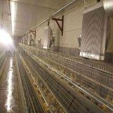 智能养殖升温自动化锅炉设备供应商制作