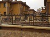 保定金属锌钢护栏 保定铁艺围栏