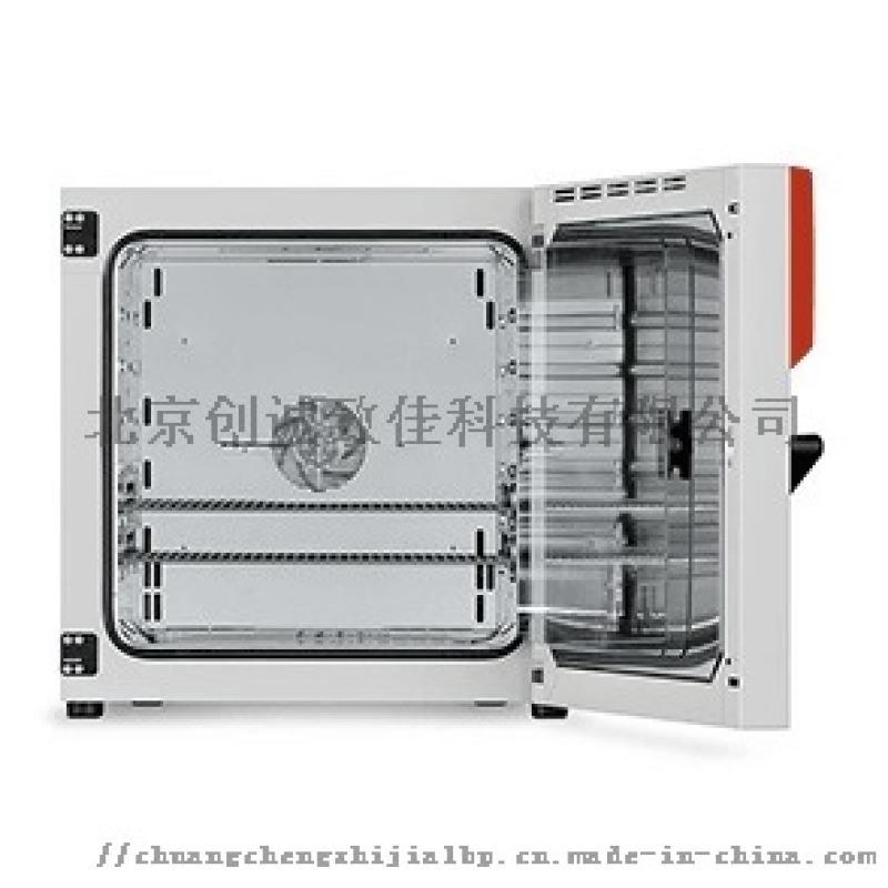 Binder BF 115 标准培养箱