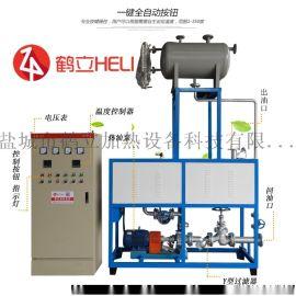 环保煤改电设备鹤立生产厂家电加热导热油锅炉