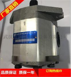 合肥长源液压齿轮泵CBHT-320扁左螺纹