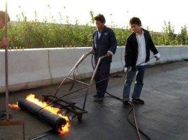 聚酯胎sbs沥青防水材料