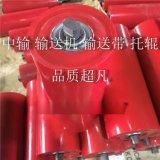 中國烤漆託輥託輥出口供應商-淄博九川-託輥生產廠家