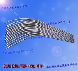 挠性导电杆
