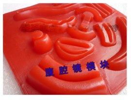 上海中弘3D腹腔镜缝合训练模型