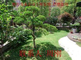 苏州别墅景观设计、苏州庭院设计公司、花园绿化设计、别墅庭院苗木批发