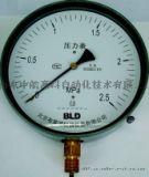 Y-100,压力表,北京布莱迪,压力表价格,BLD,天津