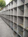 四川养殖兔笼兔舍兔子窝厂家直供