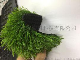 厂家直销 人造草坪 塑料仿真草坪【博纳体育】
