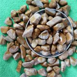 汗蒸桑拿用木纹石 水处理五彩鹅卵石 木鱼石