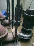 排污泵主要参数 排污泵安装 排污泵要点