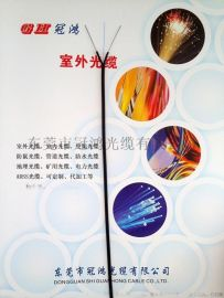 【工厂直销】GJXH室内2根钢丝皮线光缆