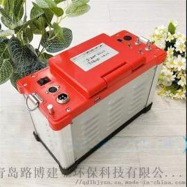 大容量可充电电池LB-62综合烟气测试仪