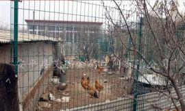 养殖围栏网价格,围地铁丝围栏网,围栏网用途