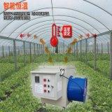 遼寧大棚電暖風機 養殖增溫暖風機 育雛保溫設備