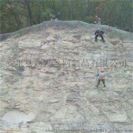 防止山体落石头的网子@护坡网@山体防护网