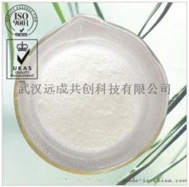 羟丙基甲基纤维素厂家|9004-65-3
