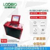 LB-3010 非分散紅外 煙氣分析儀