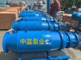 老旧泵站改造QZB潜水轴流泵井筒拍门轴流泵配件生产