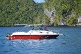 旅遊觀光艇休閒遊釣艇9米快艇