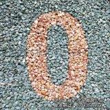 洗米石 透水路面石頭 石子 鋪路景觀造景用