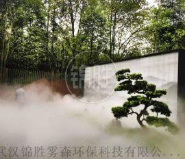 全新人造雾空气净化设备,武汉锦胜雾森净化系统