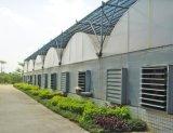 青州泉瑞厂家供应智能大型连栋薄膜温室