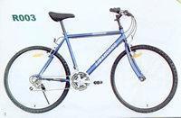 R003型自行车