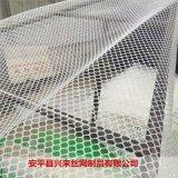聚乙烯塑料网 塑料网输送带 育雏网床的架子