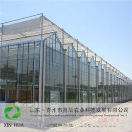 玻璃溫室建設