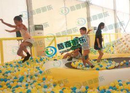 投資大型百萬海洋球需要多少錢?