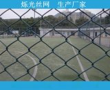 PVC优质动物园围栏勾花网 矿洞支护镀锌菱形勾花网