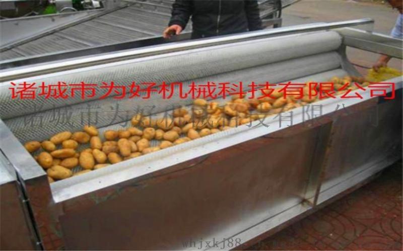 洋葱MG-1500毛辊去皮清洗机