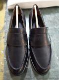時尚鞋廠 廣州鞋廠 加工鞋廠