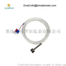 pt100 pt1000 热流道热电阻传感器