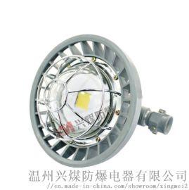DGS36/127L矿用隔爆LED巷道灯