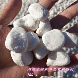 厂家批发 白色鹅卵石 家装白色鹅卵石