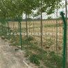 农用养殖围网 双边丝护栏网 低碳钢丝双边网