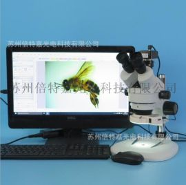 XTL-7045TJ1-T310型三目視頻顯微鏡 解剖鏡