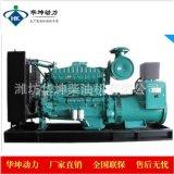 重庆康明斯200kw柴油发电机组NT855-GA纯铜无刷电机全国联保