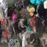 庫存純棉外貿針織拉架萊卡棉花布